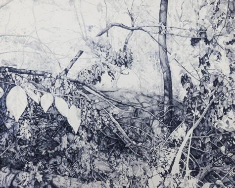 Central Park #9, oil on canvas, 160 x 200 cm, 2012